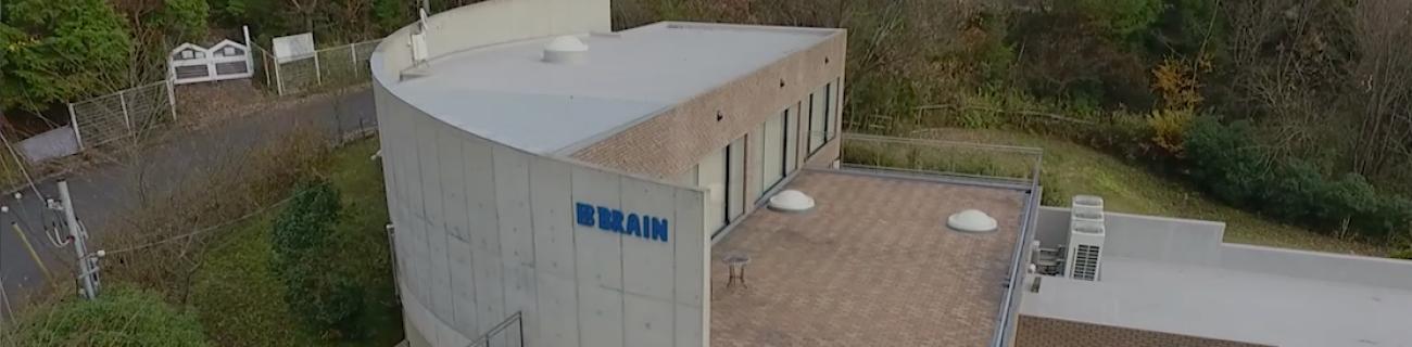 画像認識・AI・業務システム 株式会社ブレイン