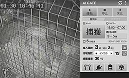 web ai gate